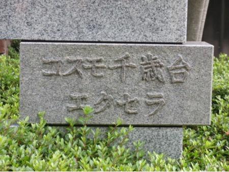 コスモ千歳台エクセラ マンション表札