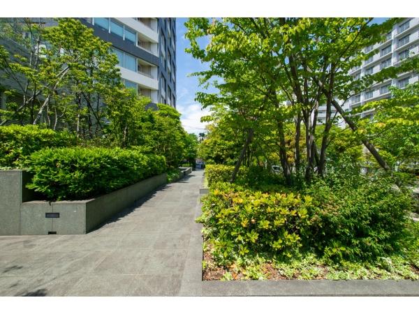 ザ・センター東京 前面歩道