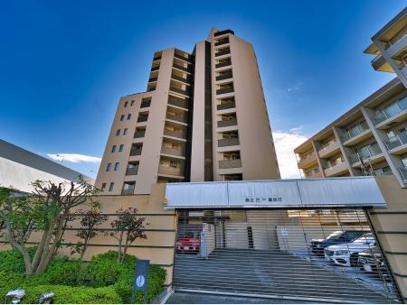フォルム浜田山 前面道路