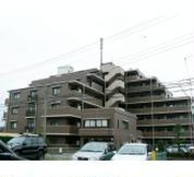 コスモ浦和埼大通り弐番館