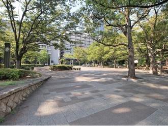 千葉県立羽衣公園