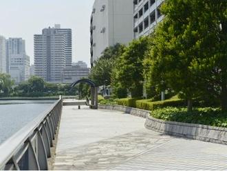 芝浦西運河沿緑地