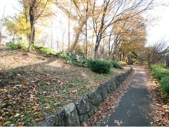 森試の森公園